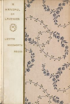 Vintage/antique book cover