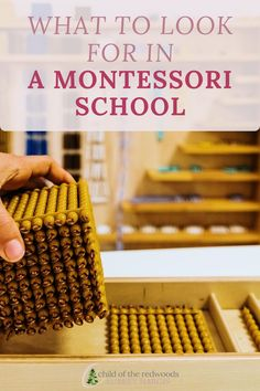 Know what to look for when you're touring schools, when to worry, and what to be excited about! Montessori Homeschool, Montessori Classroom, Montessori Materials, That Look, Children, Young Children, Kids, Children's Comics, Sons
