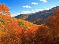 Want to plan a cheap fall vacation with the kids? We've uncovered some ridiculously affordable fall vacations for each one offering low-cost accommodations, activities and seasonal events. Destin Fishing, Fly Fishing, Livingston Manor, New Hampton, Fall Vacations, Reno Tahoe, Local Pubs, Home Of The Brave, Land Of The Free