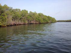 Parque Nacional Morrocoy. Navegación en Lancha
