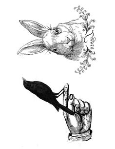 hand and rabbit image transfers