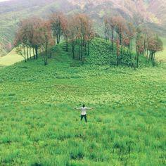 """K D R T on Instagram: """"Indonesia terkenal akan kekayaan Alam yang begitu banyak. Salah satunya Padang Savana Gunung Bromo yang terletak di Probolinggo Jawa Timur. Pemandangan Gunung Semeru dan Bromo menjadi ciri khas di Padang Savana tersebut. Klo temen-temen yang lagi liburan ke Jawa Timur jangan lupa mampir ke tempat ini. Gak bakal zong kok hehehe. @sahidyogya #sahidyogya #AyoInvestasi #id70 Gass poll yukk : @yollacsr @rizkyagungg @dyahintanie @yugkechintya @syafigamilla"""""""