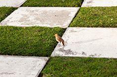 和風庭園 Japanese Garden Style, House Made, Garden Styles, Outdoor Decor