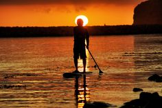 Stand Up Paddle Boarding at Dana Point Harbor