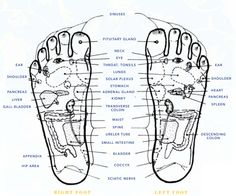 Foot Zoning Chart   Consult your physician regarding health issues of any kind ...