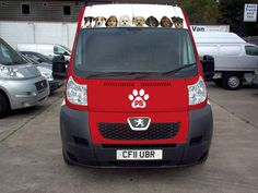 Paws Boutique mobile dog grooming Birmingham / Worcestershire  07916161616
