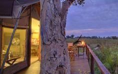 The Nxabega Okavango Safari Camp lies on the edge of the Okavango Delta in a eight wildlife concession bordering the Moremi Game Reserve. Okavango Delta, Game Reserve, Africa Travel, Tent Camping, Lodges, Safari, Wildlife, Hotels, Cabins