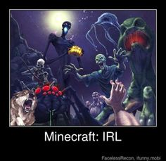 Minecraft in real life!