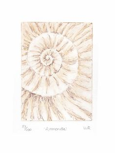 Original ammonite fossil zinc etching no.73 with mixed media