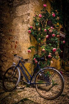 Stopping by the Restaurant - a lone bicycle, Monpazier, France - photography by Celso Bressan Velo Vintage, Vintage Bicycles, Bicycle Pictures, Beautiful Flowers, Beautiful Pictures, Foto Transfer, Bicycle Art, Disney Outfits, Belle Photo