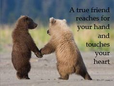 Friends touch the heart <3