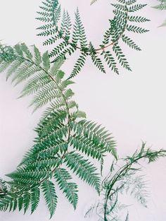 Minimalist Fern Wreath DIY — Once Wed