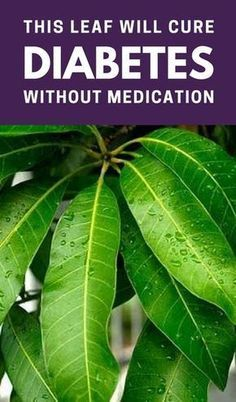 You don't have to spend a fortune to treat diabetes using this all-natural method. According to a 2010 study, extracts from Mangifera Indica (Mango) leaves proved to be effective in treating diabetes. Diabetes Remedies, Cure Diabetes, Diabetes Diet, Diabetes Care, Holistic Remedies, Health Remedies, Natural Cures, Natural Health, Health Tips