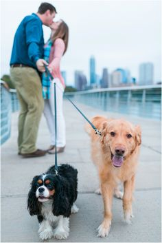 Austin Engagement Photos | The Lees Photography | Austin Boardwalk | Engagement Photos with Dogs | Golden Retriever | King Charles Cavalier Spaniel | Wedding and Engagement Photography | Austin, Texas