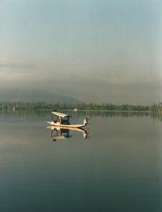 Peace at Dal Lake, Srinagar, India Srinagar, Determination, Peace, India, Illustrations, Goa India, Illustration, Sobriety, Indie