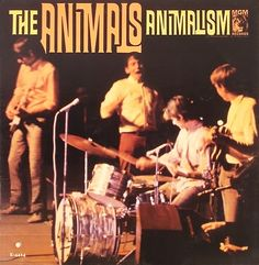 animals - animalism /// listen to it on http://radioactive.myl2mr.com /// plattenkreisel - circular record shelf, dj booth, atomic cafe, panatomic, records, rod skunk, vinyl, raregroove, crate digging, crate digger, record collection, record collector, record nerd, record store, turntable, vinyl collector, vinyl collection, vinyl community, vinyl junkie, vinyl addict, vinyl freak, vinyl record, cover art, label scan