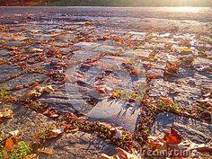 Cobbled road with autumn leaves and sunshine.  https://www.dreamstime.com/stock-photography-image102038678#res18554481  #cobbled #road #sun #autumn #season #seasonal #photo #photography #photographer #sale #image #business #stock #stockphoto ##posterdesign #design #designer #art #artist #artoftheday #picoftheday #artwork #artist #branding #digitalart #colorful #visualstyle #style #brandidentity #webdesigner #workspace #marketing #card #calendar #designinspiration #creative #creativity…