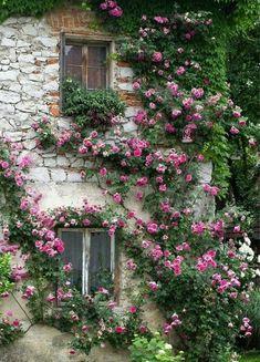 French Cottage Garden, Cottage Gardens, Rose Cottage, Stone Cottage Homes, Stone Cottages, Beautiful Landscapes, Beautiful Gardens, Beautiful Flowers, Garden Art