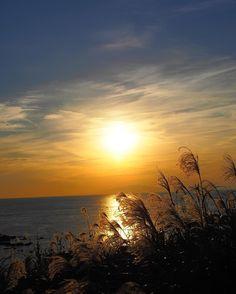 #sunset #japan #hokkaido  #instagood  #japantravel #happy #fun #look #photography #portrait #instajapan #instadaily #ポートレート #japantrip #natgeo #amazing #photo_shorttrip #solo #yolo  #awesome #cool  #wonderful_places