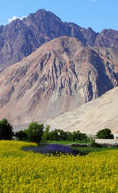 Ladhak is the perfect place for all mountainous adventure sport. The trek through Suru Valley to the Drang Drung glacier is a great one as it offers a mix of all the possible things you can do on the mountains. Bear in mind this trek should be taken up by experienced trekkers as it's seen to be a tough one in the region.
