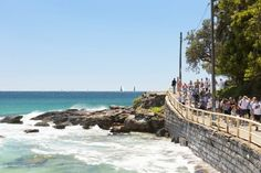 Path from Manly Beach to Shelly Beach. Highly recommended walk. The beach itself is safe, shallow and plenty of fish.