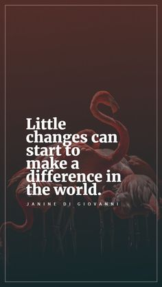 Little changes can start to make a difference in the world. - Janine di Giovanni New Quotes, Inspirational Quotes, Everyday Quotes, Make A Difference, That One Person, Beautiful Mind, Choose Me, Different, Things I Want