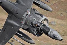 Fifty shades of grey ;) Royal Air Force Harrier GR9 #air #plane #aircraft…