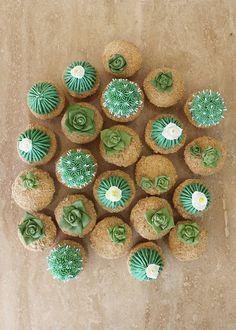 Cactus Cupcakes @alanajonesmann