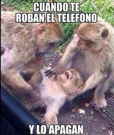 Cuando te roban el teléfono...