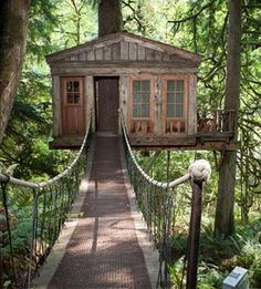 The new hotel: TreeHouse Point, Washington