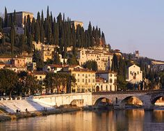 Italy; for Lake Garda, Sicily, Rome, Venice, Tuscany......all that pizza, pasta and wine. Divine.