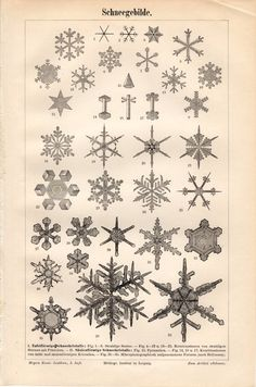 1897 Antique Snowflakes Print, Snow, Snowflakes, Snow Crystals, German Lithograph