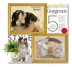 """""""LA Dog Store"""" by ladogstores ❤ liked on Polyvore featuring rustic and country"""