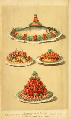 Colour plate from Cassell's Dictionary of Cookery (1892).