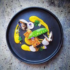 "Foodstarz on Instagram: ""Foodstar Chai Jankulprasut (@lvin1stbite) shared a new image via Foodstarz PLUS /// Crispy Pork Belly, Clam, Snow Pea, Pumpkin Puree and Radish #pork #clam #snow #pumpkin #plating #foodstarz"