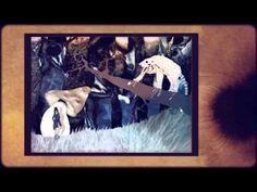 Video: Künstler & Kunstwerke caratart Epsiode 2 / Video: Artists and artworks caratart Episode 2 Graffiti, Angry Wolf, October, Artworks, Photo Illustration
