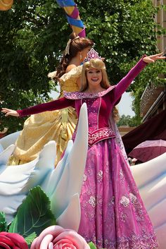 Character of the Week - Princess Aurora Disney Characters Costumes, Disney World Characters, Princess Costumes, Character Costumes, Disneyland World, Tokyo Disneyland, Fairy Pictures, Disney Pictures, Disney Girls
