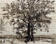 William Kentridge: large drawings of trees in Indian ink on found encyclopedia pages, torn up and reassembled.