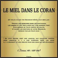 Coran - V16 s.68-69 Islam Hadith, Allah Islam, Alhamdulillah, Jummah Mubarak Messages, Le Noble Coran, Saint Coran, Calligraphy Name, Coran Islam, Islam Religion