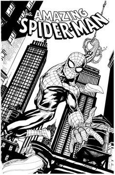 Robert Atkins has been posting a sketch of the Amazing Spider-man Stan Lee Spiderman, Black Spiderman, Amazing Spiderman, Spiderman Coloring, Superhero Coloring, Spiderman Pictures, Guy Pictures, Anime Character Drawing, Comic Character