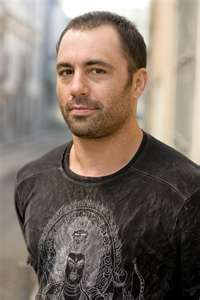 Joe Rogan is probably my #1 MALE role model. I am drawn to how deeply he pursued each of his passions and how he became successful in all of them. I guess I have a thing for multi-passionate people. He's a martial artist, comedian, and an honest truth-seeker and thinker -- thousands of people listen to his enlightening, common speak podcasts.