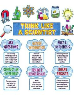 Amazon.com: Teacher Created Resources Think Like a Scientist Mini Bulletin Board, Multi Color (4867): Office Products