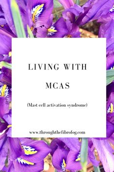 This post talks about the realities of living with the chronic illness mast cell activation syndrome - MCAS. It talks about my diagnosis, symptoms, the low histamine diet, supplements and treatments. Ehlers Danlos Hypermobility, Mast Cell Activation Syndrome, Interstitial Cystitis, Diet Supplements, Migraine, Chronic Illness, Fibromyalgia, Allergies, Pots