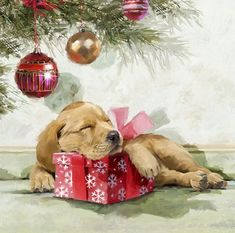 Sleepy Pup by The Macneil Studio Framed Art Christmas Scenes, Christmas Pictures, Christmas Time, Christmas Bulbs, Christmas Crafts, Merry Christmas, Christmas Decorations, Xmas Holidays, Illustration Noel