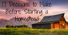 """17 Decisions to Make Before Starting to Homestead"" We've considered most of these things, but it's nice to have some additional information and suggestions from someone with experience in homesteading."