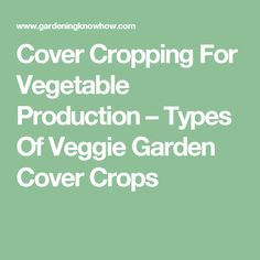 Cover Cropping For Vegetable Production – Types Of Veggie Garden Cover Crops