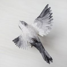 Paper Bird No. 3 by Katie Armour. 150
