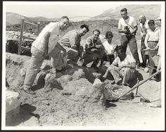 Μυκήνες 1953. Ο Ι. Παπαδημητρίου, ο Γ. Μυλωνάς και ο Ι. Καραμήτρος με επισκέπτες στην ανασκαφή του Ταφικού Κύκλου Β.  Η εν Αθήναις Αρχαιολογική Εταιρεία, CC-BY-NC-ND