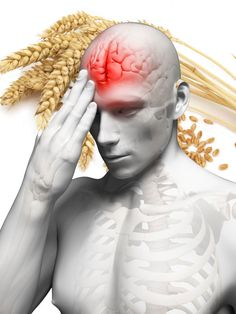 We know that wheat harms the gut, which has been called the second brain. So is it all that surprising to learn that it could have nerve and brain-damaging properties?