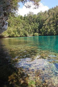 @ Raja Ampat Islands, Papua, Indonesia